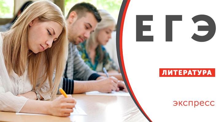 Подготовка к ЕГЭ по литературе ( уровень программы:экспресс)