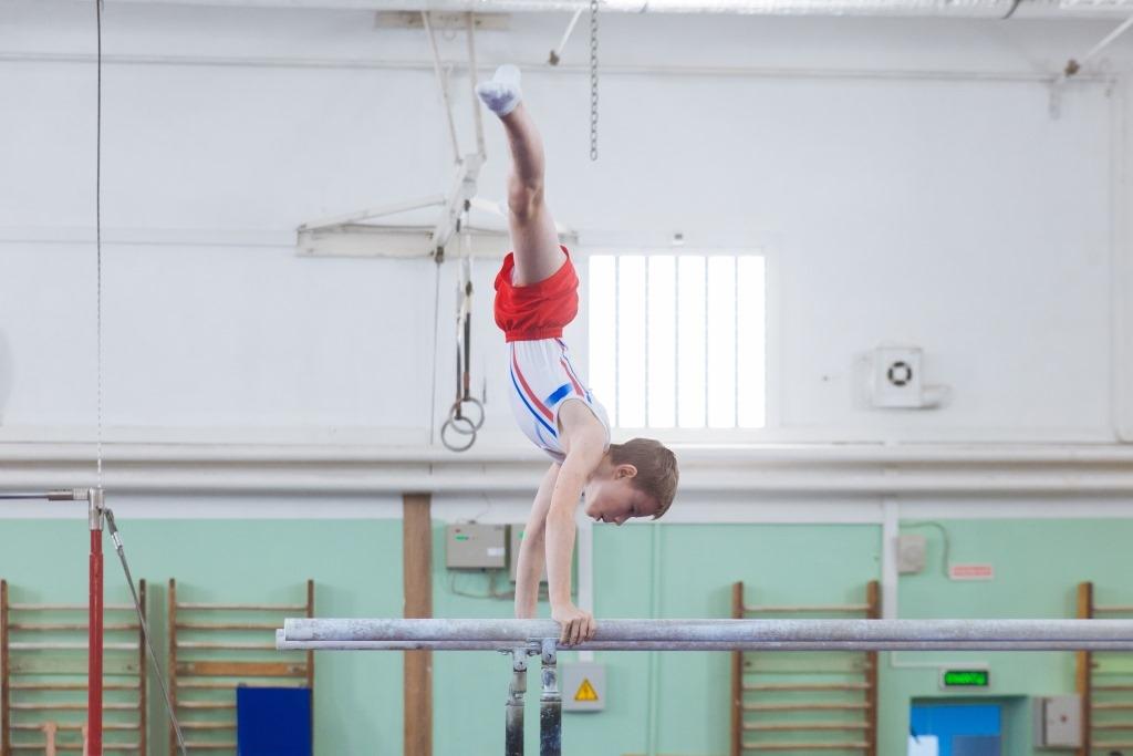 Методика преподавания спортивной гимнастики в начальной школе