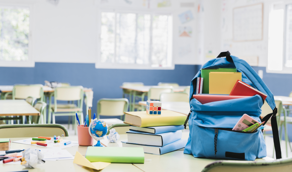Проектирование и развитие образовательной среды современной школы