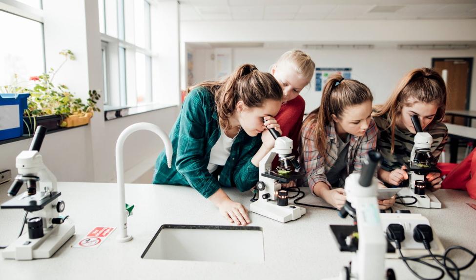 Организация проектно-исследовательской деятельности учащихся в условиях реализации ФГОС