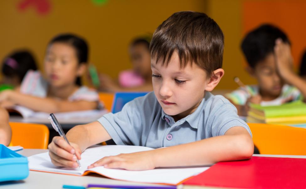 Формирование основ функциональной грамотности обучающихся начальной школы