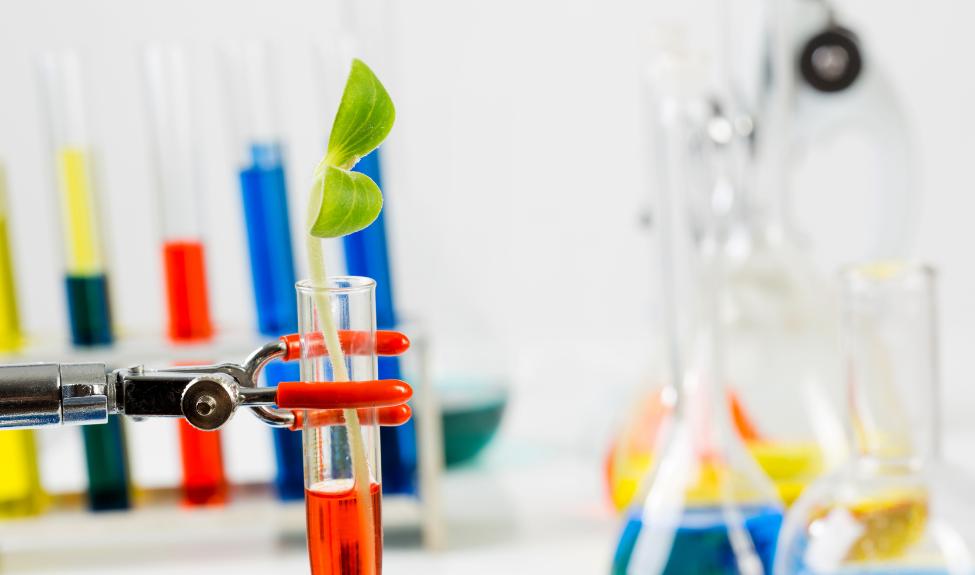 Теория и методика естественнонаучного образования