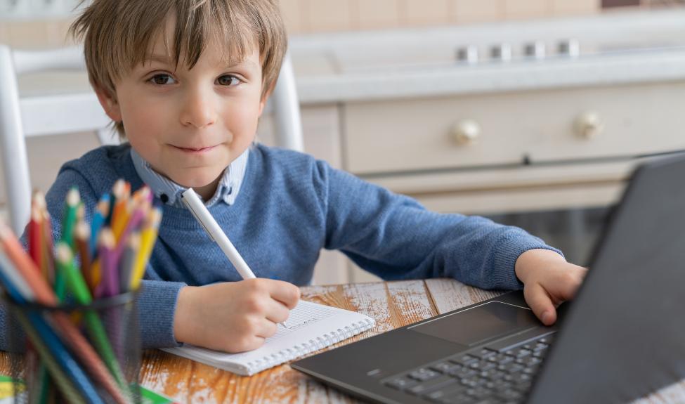 Погружение в цифровую педагогику: дидактика дистанционного обучения младших школьников