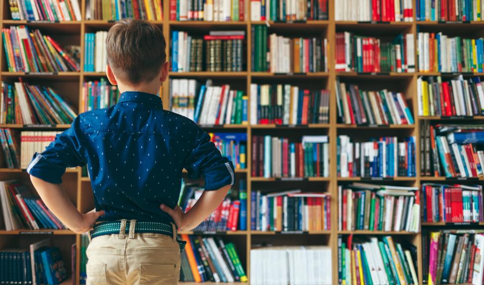 Партиципаторная школьная библиотека: проектирование и использование ресурсов школьной библиотеки в образовательном процессе