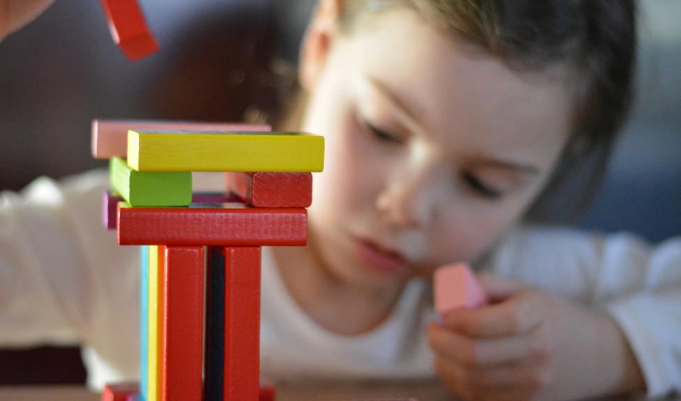 Функциональная грамотность как условие социальной успешности ребенка с ОВЗ