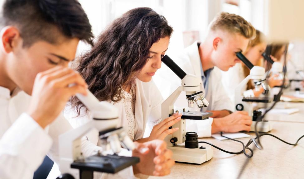 Научно-образовательная программа «Большие вызовы» бьет рекорды